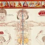 Medico Tibetano